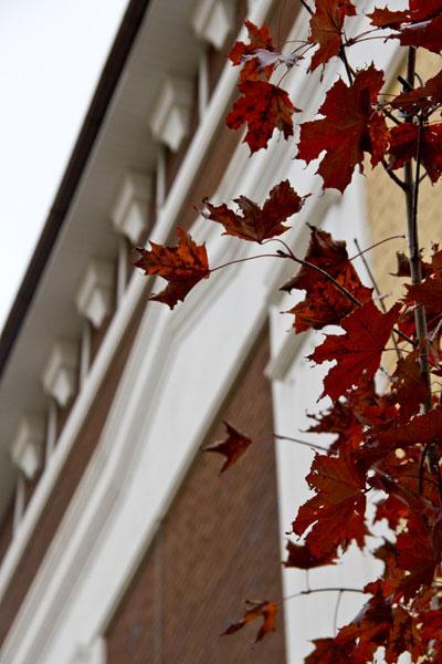 фасады осенью